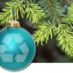 """Make holiday cleanup easy and """"green"""" this season"""