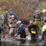 Clinton River Coldwater Conservation Project