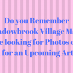 Looking for Photos of Meadowbrook Village Mall for Upcoming Article