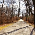 Revitalize the Woodland Entrance at Meadow Brook Hall this Friday