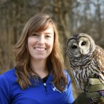 Experience The Wonders of Raptors in Oakland Township